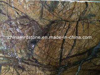 Stock a granel Rainforest Brown Marble con Low Price