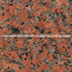 G562 popular Maple Red Granite para Medio Oriente Supermarket