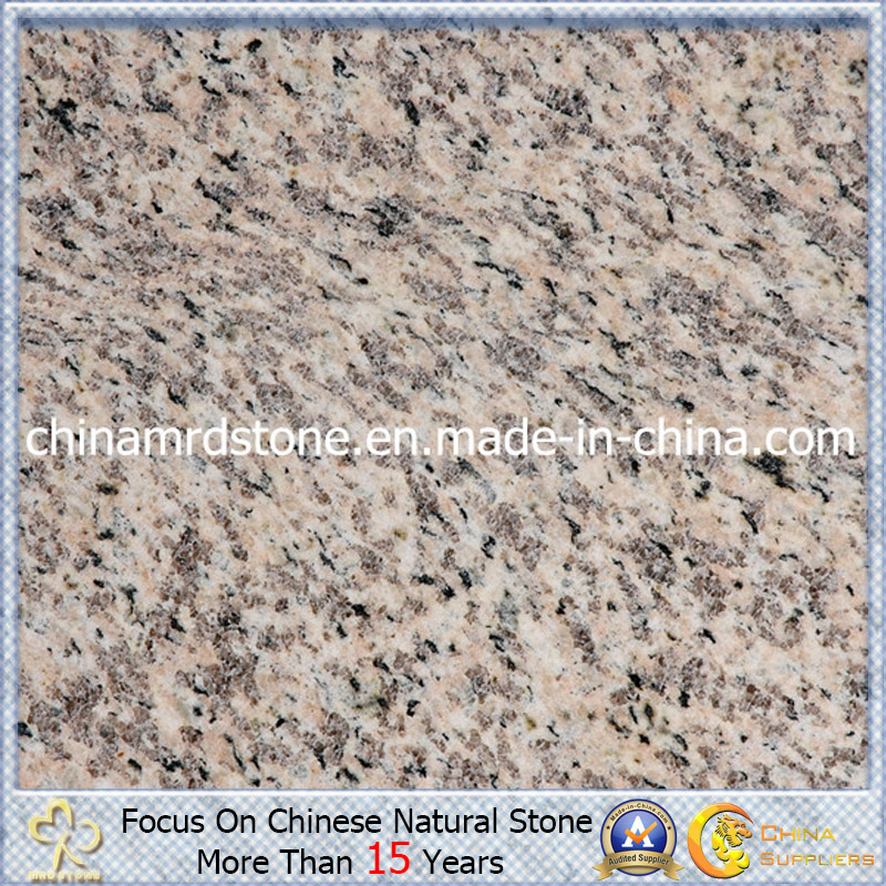 Tiger Polished Skin Red Granite para Flooring o Wall